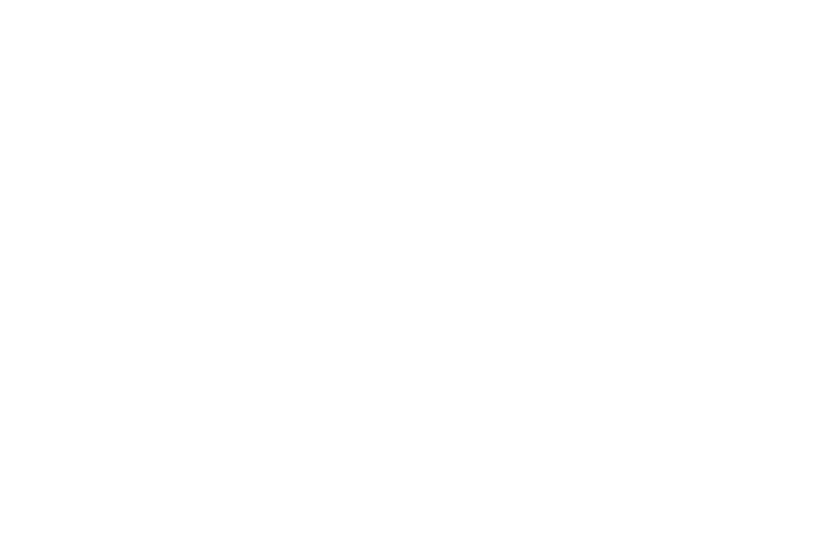 The Michelson Foundation